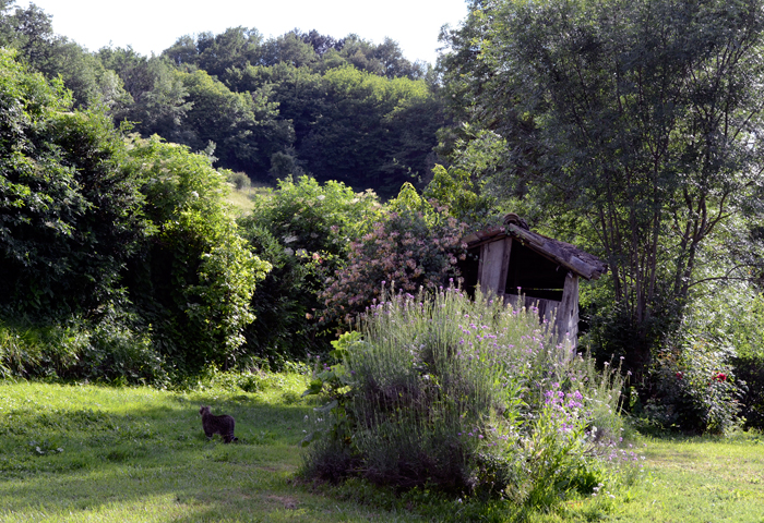 a garden to relax, guest bedrooms in Puycelsi, Tarn