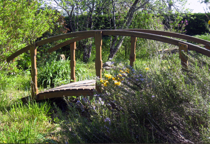 garden and wooden bridge, bed and breakfast in Puycelsi near Albi